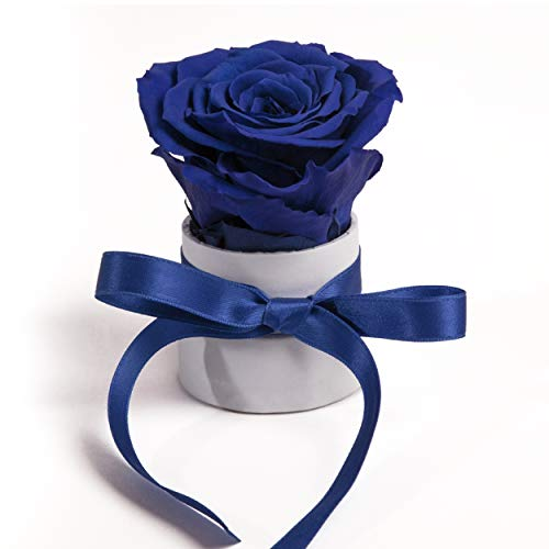 ROSEMARIE SCHULZ Heidelberg Mini Rosenbox weiß rund Infinity Rose - Flowerbox 1 konservierte Rose (Weiß-Blau)