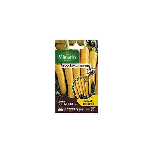 Vilmorin - Sachets graines carottes Goldnugget HF1