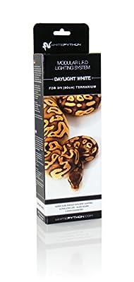 WhitePython LED Light Kit, 60 cm, Daylight White by WhitePython