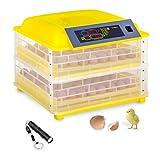 MSW Motor Technics Incubato Incubadora de Huevos Automatica IN-96DDI (96 Huevos, 120 W, Linterna ovoscopio Incl, Control de Temperatura Inteligente 20-50 °C)