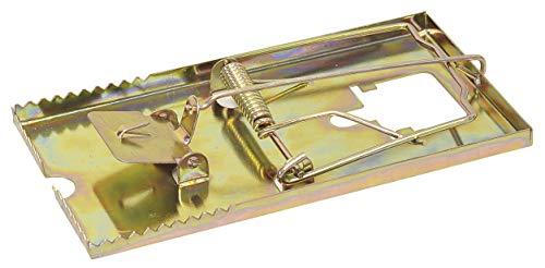 XGMSD Bagno Hardware Rame Porta Scopino Rame WC WC di Rame Porta Scopino Servizi Igienici di Base Spazzola