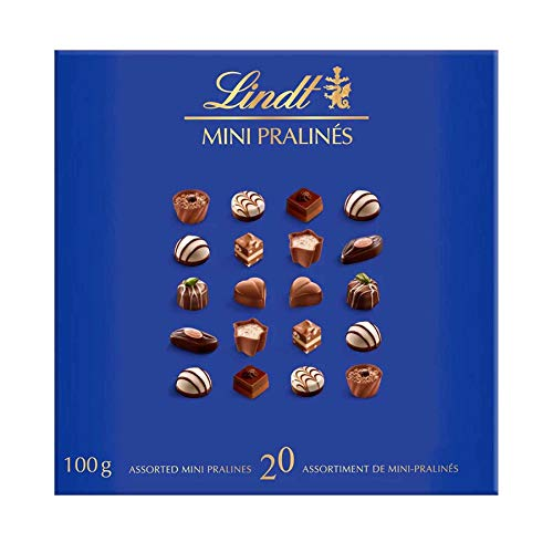 Chocolate Lindt Mini Pralines Sortido 100 gr