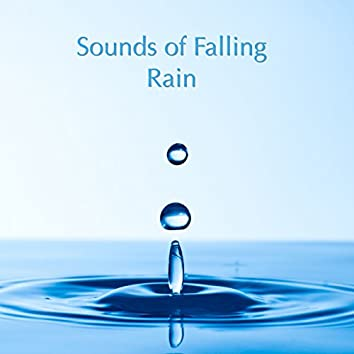 Sounds of Falling Rain