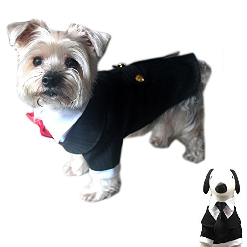 Alfie Pet - Oscar Formal Tuxedo with Black Tie and Red Bow Tie - Color: Black, Size: XXL