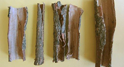 Seemandelboomschors buizen 100 gram origineel A-merkproduct van SMJS-Cambodia - BLITZVERZENDING - zeemandelaar Catappa Bark