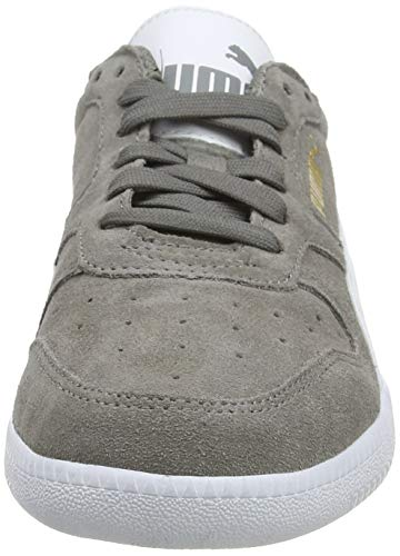 Puma Unisex-Erwachsene Icra Suede Sneaker, Grau - 2