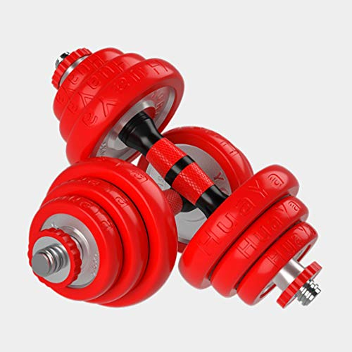 RWX Mancuernas Galvanoplastia Pesos Ajustables con Mancuernas Juego de Pesas con Antideslizante Barra Conector, 20Kg Home Gym Fitness Training Equipment (10 kg x 2) Equipo de Ejercicio físico