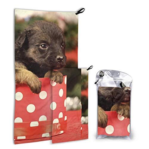 N\A Puppy Dog Play Box Fun 2 Pack Microfiber Teen Beach Serviette Boy Beach Serviette Set Fast Drying Best for Gym Travel Backpacking Yoga Fitnes