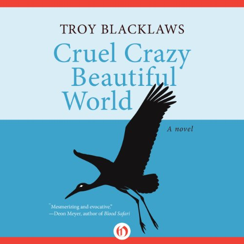 Page de couverture de Cruel Crazy Beautiful World