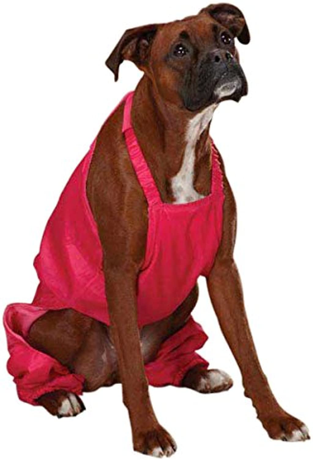 Casual Canine Nylon Snow Dog Bib, Large, Raspberry