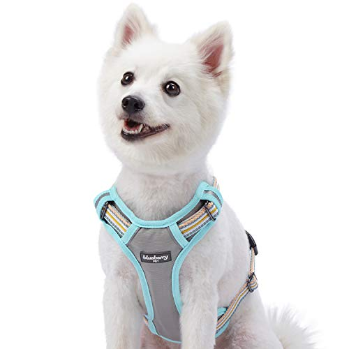 Blueberry Pet New Geschirre 56cm-68cm Brust 3M Reflektierende Ultimative Sicherheit Zugentlastende Netz Gepolsterte Hundegeschirr Weste in Pastellblau und Beige, Passendes Halsband Separat Erhältlich