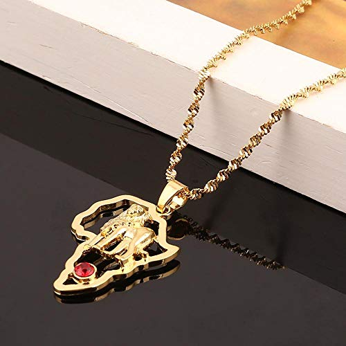 Nobrand Gold Farbe Afrika Löwe Anhänger Halskette Trendy afrikanische Karte Tierkette Schmuck
