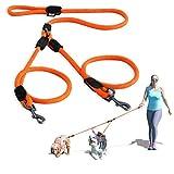 PAWTITAS Doppelleine fur Zwei Hunde | Hundeleine für Zwei Hunde ideal zum Trainieren und Gehen | Leine fur Hund fur Klein Hund und Grosse Hund - Mittelgroßer und Große Orange Hundeleine