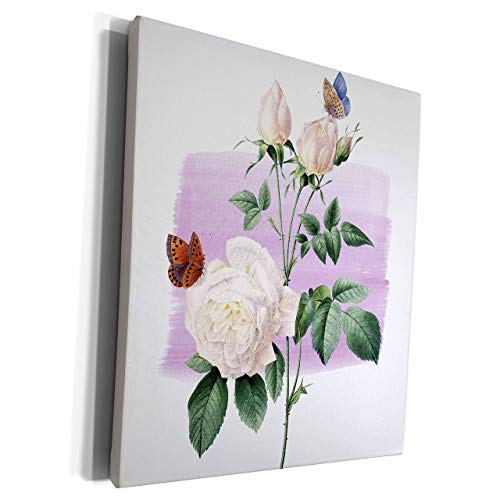 Scott397House Unframe Canvas Printing Wall Art 20x25 Ps Vintage Vintage White Roses with Butterflies Framed Canvas Art Picture Print Wall Decoration for Living Room/Bed Room