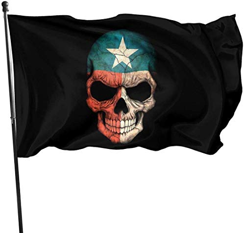 Deko-Fahne mit Texas-Flagge, für den Garten, Kunstfahne für Zuhause, Garten, Hof, Dekoration, 91 x 152 cm
