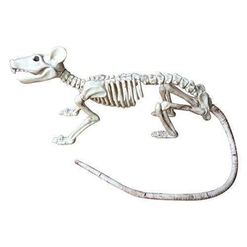 XZANTE Rata Esqueleto Agradable PP + PVC Animal Huesos De Esqueleto para La Decoracion De Halloween De Terror (Raton)