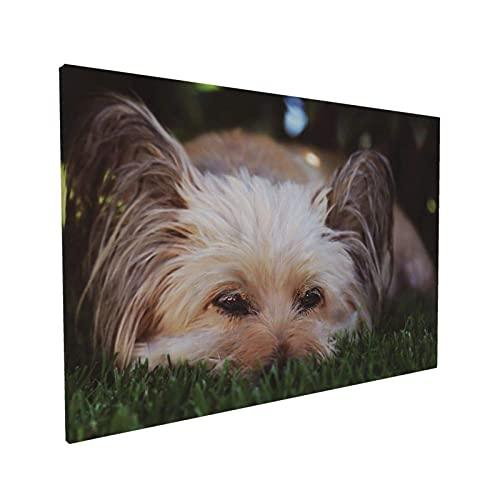 Lsjuee Animal Papillon Dog Continental Toy Spaniel Peludo Póster Decorativo Pintura Lienzo Arte de Pared Sala de estar 40 x 60 cm