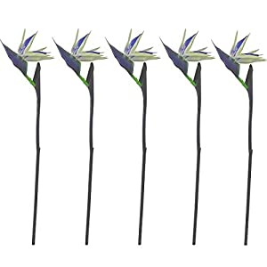 """Calcifer 32"""" Real Touch Bird of Paradise Artificial Flowers Bouquet for Home Garden Decoration/Wedding Party Decor (Package Quantity: 5 Stems Blue)"""