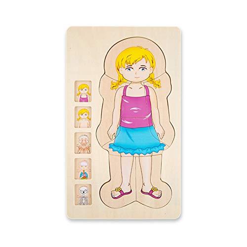 Faironly - Puzzle Madera niños Estructura Cuerpo