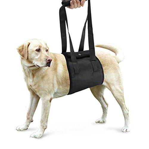 UEETEK Perro elevación Soporte arnés canino Ayuda rehabilitación arnés para Perros con Patas traseras débiles, 10-25KG