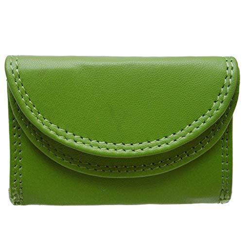 flevado Kleine handliche Party Disco Geldbörse in Mehreren Farben Lifestyle mit RFID Schutz (grün)