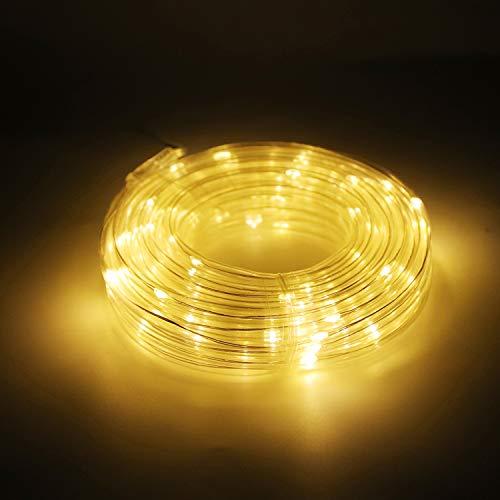 Salcar Lichterketten 10m LED Lichtschlauch mit 100er Micro Kupfer Draht, LED Garten deko für Weihnachten, Weihnachtsbaum, Garten, Terrasse, Balkon USB - Warmweiß