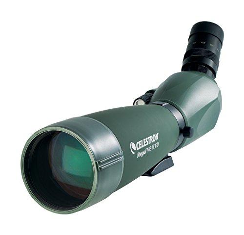 Celestron Regal - Cannocchiale M2 20-60x80 (45 gradi)