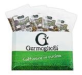Semi germoglio GREEN Packs INIZIA A GERMOGLIARE nr.4 conf. pronte all'uso da 32gr MISCELA di SEMI...
