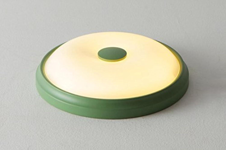 OOFAY Moderne runde Korridorlampen der LED-Deckenlampe, die natürliches Licht der Inneneinrichtung 24W beleuchten, Grün