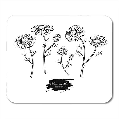 Mauspads kamille zeichnung gänseblümchen wilde blume und blätter kräuter graviert detaillierte botanische skizze für tee bio-mauspad für notebooks, Desktop-computer matten büromaterial