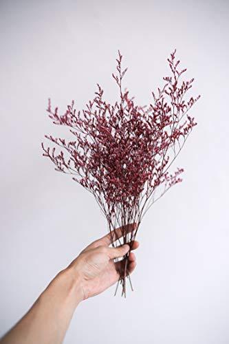 Llzpl Amante de la hierba flor seca flor eterna caja de arreglos florales material de pegamento hecho a mano pegamento decoración del hogar flor seca fresco pequeño ramopequeña flor eterna roja