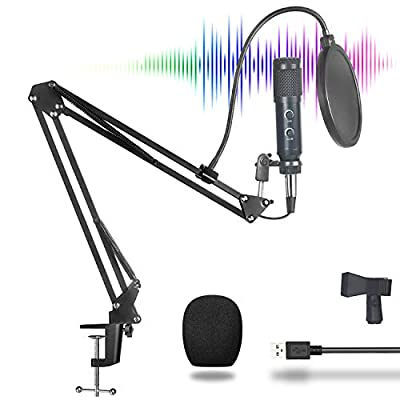 BM900 XLR to USB Condenser Microphone Kit for Computer, Cardioid Pickup, Echo Button, Plug & Play, Adjustable Steel Arm Stand with Table Clamp for Music Game Podcast Video Stream Voice Over Recording