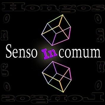 Senso Incomum