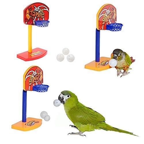 CHIPYHOME Canasta de Baloncesto y 3 Pelotas de Aprendizaje para Loros, periquitos, Canarios, agapornis. Diversion y Entretenimiento garantizados para tu Mascota