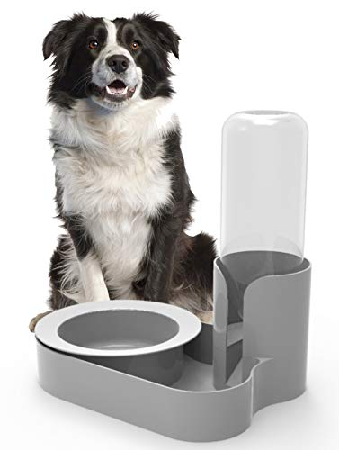 Bugout Original Ant Proof Pet Feeding Bowl & Automatic Water Station for Dogs & Large Pets Granite Grey - Made in USA