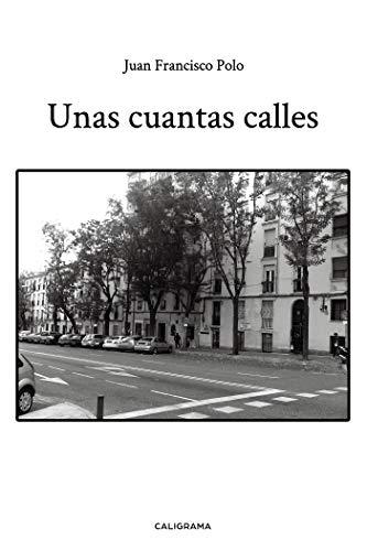 Unas cuantas calles eBook: Polo, Juan Francisco: Amazon.es: Tienda ...