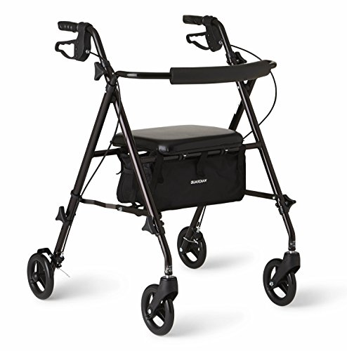 commercial Medline Freedom Lightweight foldable aluminum rollers, 6 inch wheels, … folding rollator lightest one