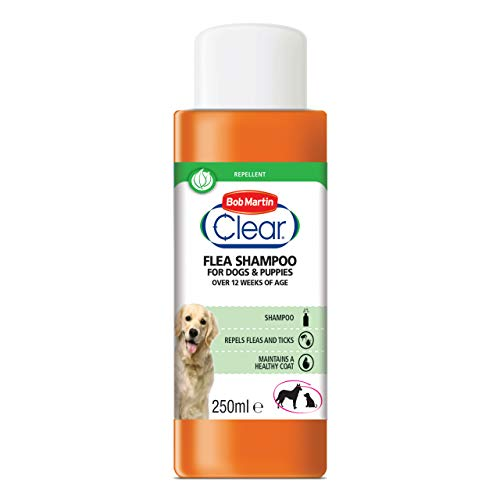Bob Martin Clear Flea Repellent Shampoo for Dogs and Puppies - Repels Fleas and Ticks and Maintains a Healthy Coat, 250ml