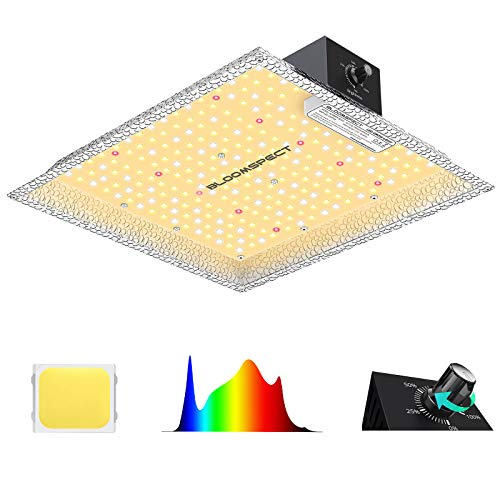 BLOOMSPECT SL600 LED Grow Light with Samsung LEDs, Dimmable Full Spectrum Commercial Growing Lights with Reflector Hood 2x2ft Flower Coverage for Indoor Plants Seeding Veg & Bloom, 250pcs LEDs