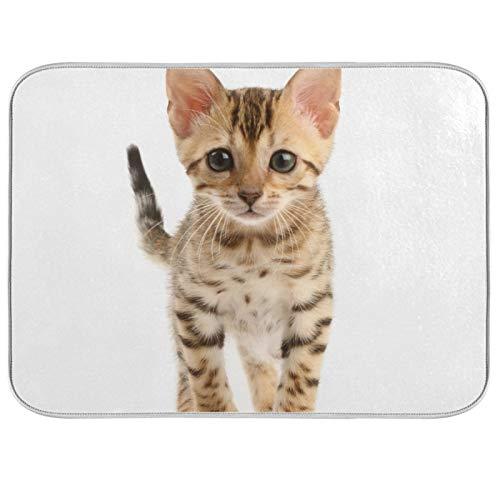 Tapis de séchage à vaisselle Microfibre de comptoirs de cuisine Protecteur de coussin sec 16 x 18 pouces Cat Little