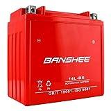 Banshee YTX14L-BS Motorcycle Battery for Harley-Davidson 1200cc XL XLH Sportster 2006