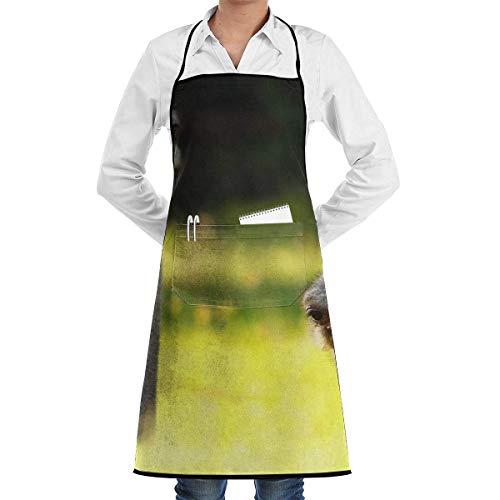 Divertido Avestruz Unisex Chef Cocina Delantal de cocina Delantales de moda duraderos Babero con bolsillo para restaurante Café Hogar Barbacoa Parrilla Hornear Jardinería Artesanía Pintura