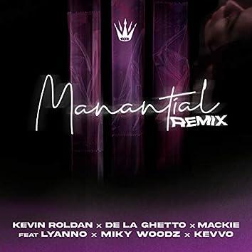 Manantial (Remix)