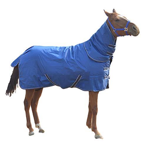 MaJu Abschwitzdecke Pferd Winterdecke 300 g Füllung mit Halsteil und Kreuzgurt (Size:145cm)