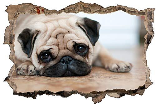 Fotografie Hund Mops Tier Wandtattoo Wandsticker Wandaufkleber D1890 Größe 70 cm x 110 cm