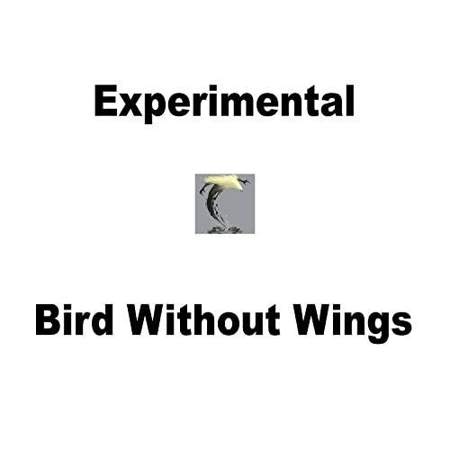 Bird Without Wings