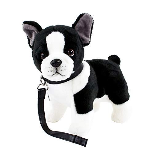Teddys Rothenburg Kuscheltier Französische Bulldogge mit Halsband und Leine 25 cm schwarz/weiß gescheckt Plüschhund