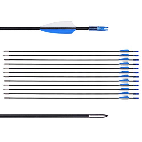 CUPID 31' Training Arrows-Archery Practice Target Arrows with Durable Shaft Blunt Tip for Kids Youth or Beginners on Recurve Bow Long Bow (12pcs Arrows, Blue)