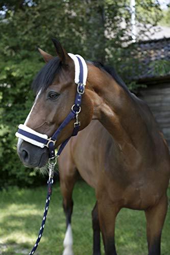 Covalliero 3211601 Pferdehalfter mit Webpelz, Größe 3, blau