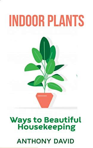 Indoor Plants:: Ways To Beautiful Housekeeping